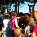 Otroci in konji