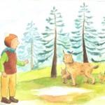 Zgodbe, pravljice za otroke