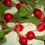 NJAM: Maj – mesec rdečih sadežev